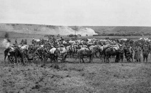 Australian artillery units pursued retreating German forces in late October 1918. (Australian War Memorial).