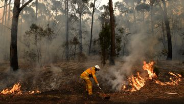 Rural Fire Service volunteers and Fire and Rescue NSW officers  contain a small bushfire which closed the Princes Highway south of Ulladulla.