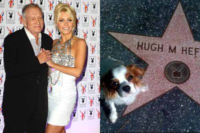 Back in 2011, Hugh Hefner was not only the jilted groom by Crystal Harris but a few months later she also launched a battle to win ownership of their Cavalier Kings Charles Spaniel Charlie. This was despite saying Hefner could originally keep it. Bizarrely, the couple soon got back together and all was forgotten.