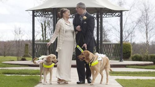 Couple marries after guide dogs 'fall in love'