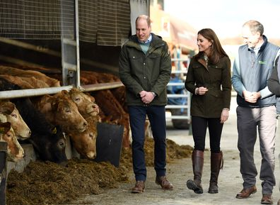 Kate Middleton Prince William royal tour of Ireland day two