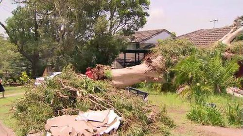 1000 SES crews will be on the ground this morning, cleaning up after a wild weekend of storms.