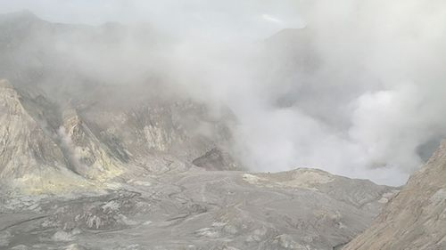New Zealand volcano Whakaari, or White Island, has erupted.