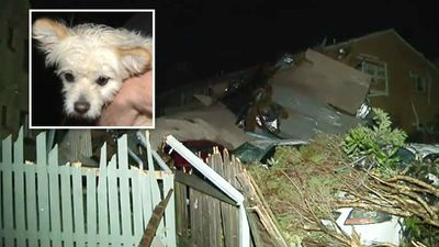 Resident Julius Toole told 9NEWS how he and his fiancée rescued their dog from rubble after the roof was torn off their home. (9NEWS)