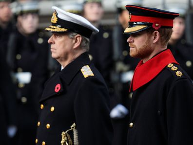 Prince Andrew and Prince Harry at the Cenotaph, Remembrance Sunday 2019.