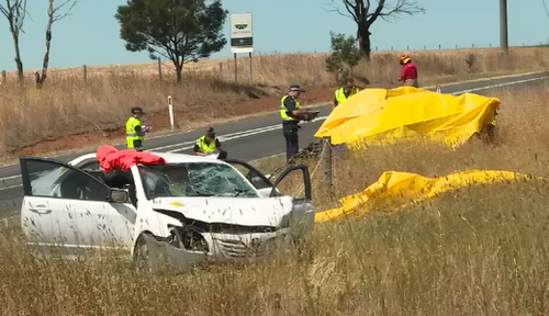 There are now calls for tougher conditions for international drivers. (9NEWS)