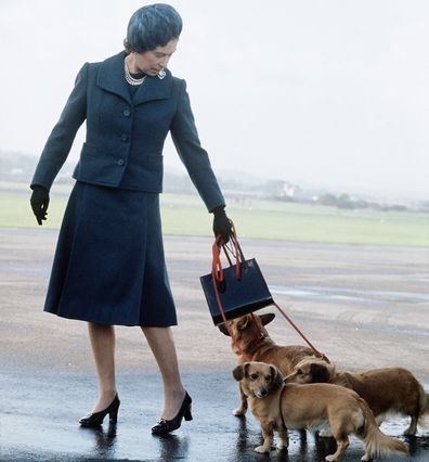 Queen Elizabeth with her corgis at an airport