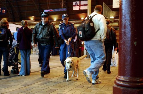 NSW Police have threatened to turn away anyone picked out as a possible drug smuggler by sniffer dogs. Picture: AAP
