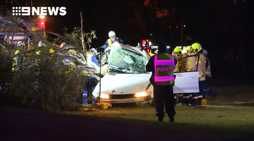 A 17-year-old boy has died after crashing his car near Wollongong last night.