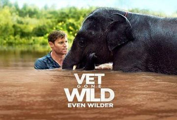 Vet Gone Wild: Even Wilder