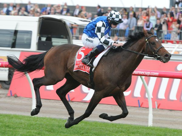 Protectionist winning last year's Melbourne Cup. (AAP)