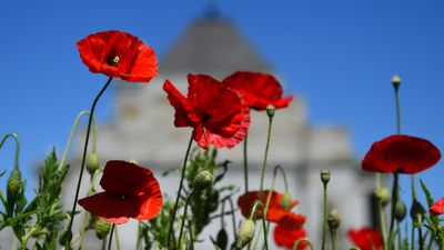 Anzac Day weather forecast for your city