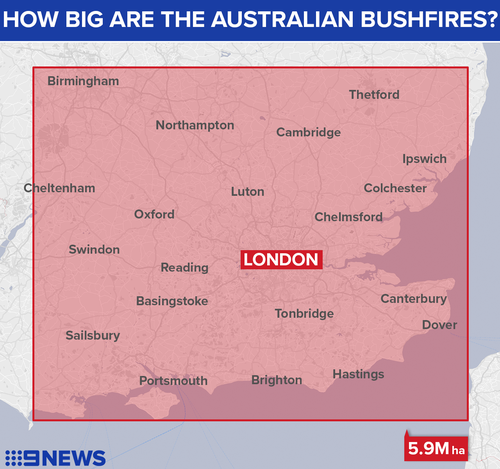 The Australian bushfires have burned through nearly 6 million hectares of land.