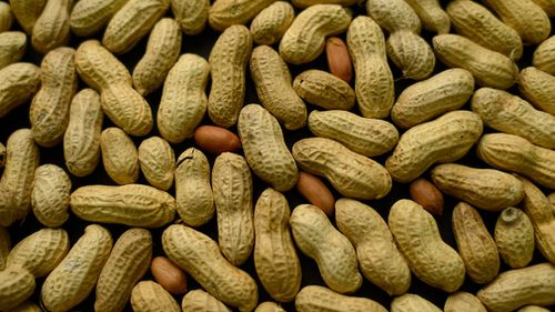 Australian researchers say they may have found a way to cure peanut allergies. (File/AAP)