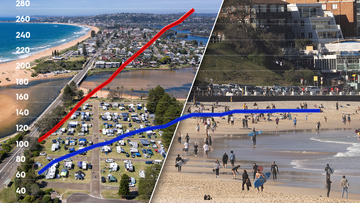 The Avalon and Bondi clusters responded differently to lockdowns.