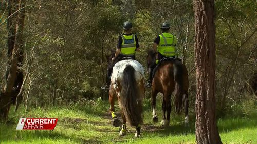 Volunteers will help police with a ground search of a 300m radius around the Curry family holiday home today. (9NEWs)