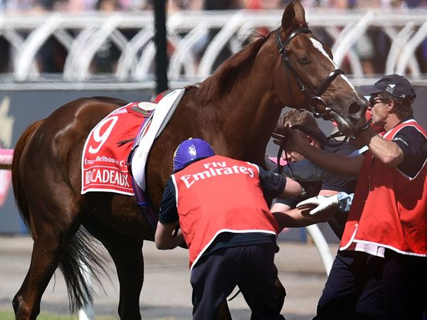Red Cadeaux doing well after surgery