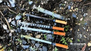 Community outraged after scores of needles found in single Adelaide reserve