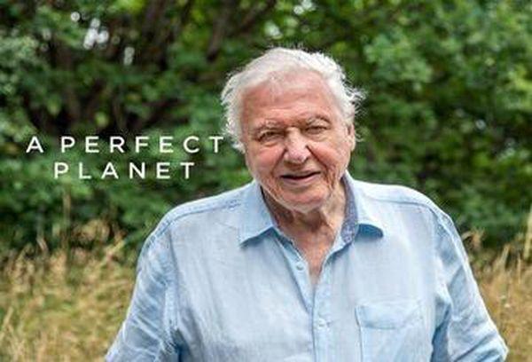 David Attenborough's A Perfect Planet