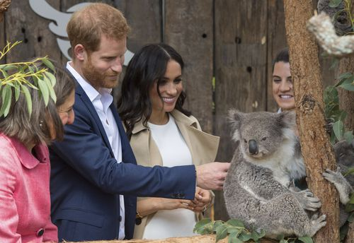 The Duke and Duchess of Sussex meet a koala in Sydney.