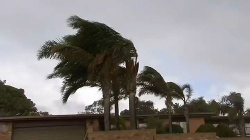 There have been more than 180 SES callouts across South Australia after damaging winds wreaked havoc across the state.