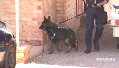 Sniffer dogs have joined police in searching about 60 homes in the area. (9NEWS)
