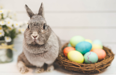 Easter Bunny alongside basket of eggs
