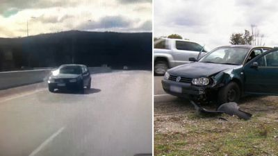 Car goes wrong way down highway before crashing into driver