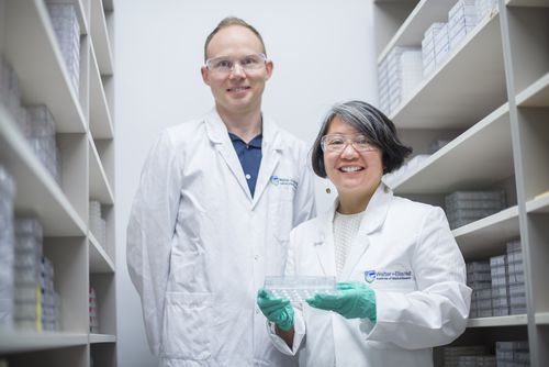 Lead researchers Associate Professor Wai-Hong Tham and Dr Jakub Gruszczyk. (Image: AAP/Supplied)