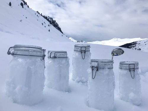 Scientists of the 'Helmholtz centre for polar and marine research the Alfred Wegener institute' say they proved plastic in the snow of the Alps and the Arctic.