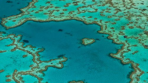 Half a billion dollars have been set aside to protect the Great Barrier Reef. (AAP)