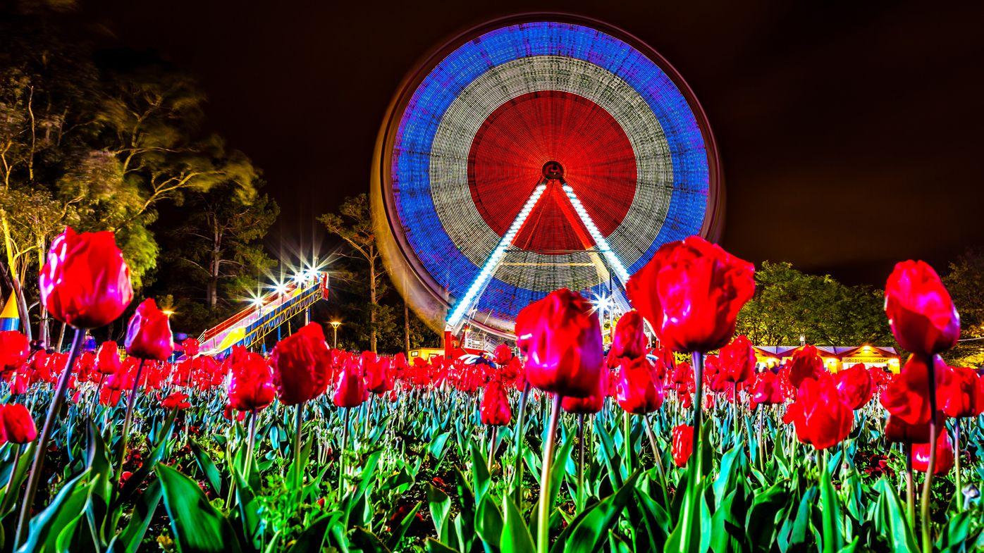 Canberra-Floriade-festival_nightfest