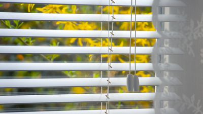 Clean your blinds