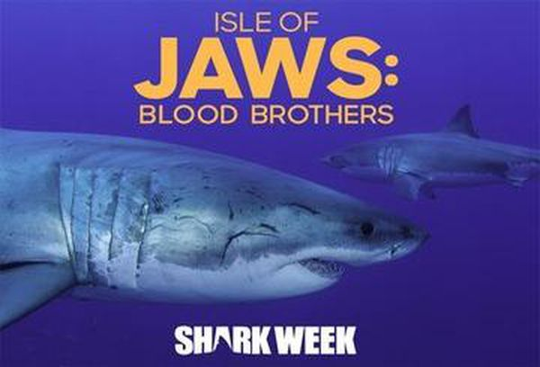 Isle Of Jaws: Blood Brothers