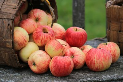 <strong>Apples</strong>