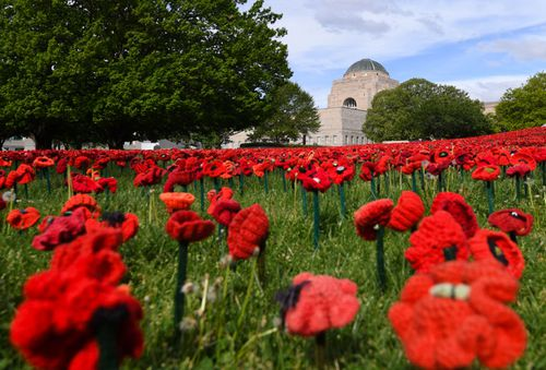 Sixty-two thousand hand-made poppies cover the gardens at the Australian War Memorial marking the Armistice Centenary later this month.