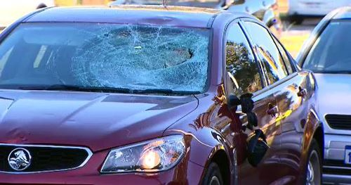 Police say the cyclist went through a red light and collided with the car. (9 News)
