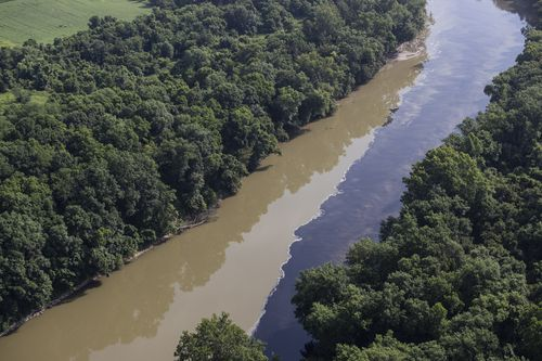 Alcohol from burned Jim Beam warehouse floods river, kills fish