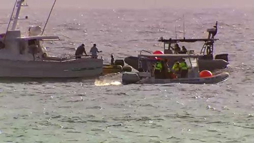 The ongoing rescue operation has been increasingly difficult, with the young whale captured thrashing about and dragging the tangled nets some 700m down the coast.