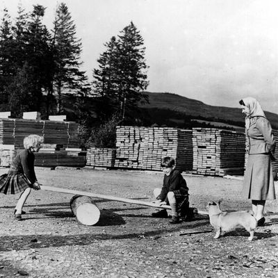 1957: Prince Charles and Princess Anne playing on an improvised see-saw, watched by Queen Elizabeth II and Prince Philip, Duke of Edinburgh at a sawmill on their estate at Balmoral Castle in the Scottish Highlands.