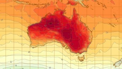 Fire bans issued across Adelaide as mercury soars to 38C
