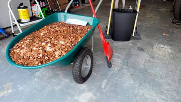 The wheelbarrow filled with pennies.