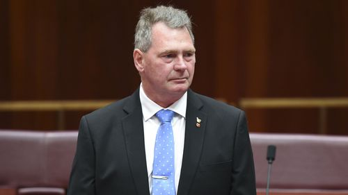 Independent Senator Steve Martin has thrown his weight behind the tax cuts. (AAP)