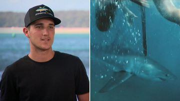 A man has filmed himself swimming alongside a Great White Shark off Sydney's coast.
