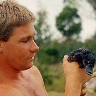 Steve Irwin: 1980s
