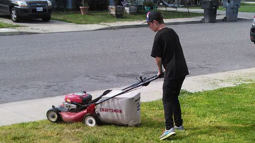US teen offers to mow stranger's lawn to earn enough to take girlfriend on date