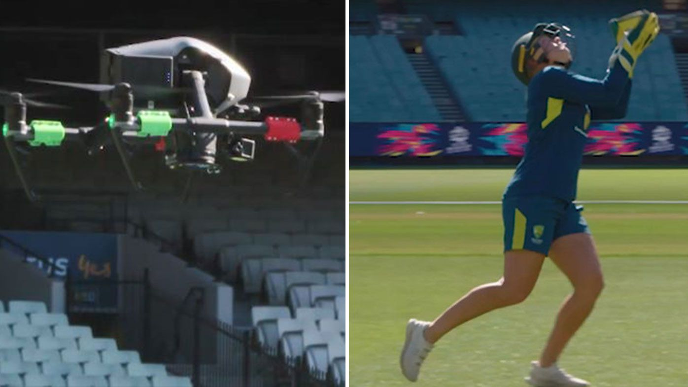 Alyssa Healy breaks world record for highest catch of a cricket ball