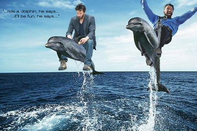 <b>Hugh Jackman's</b> infamous mid-air crash during his appearance on Oprah's Down Under show has become the best Photoshop opportunity ever!