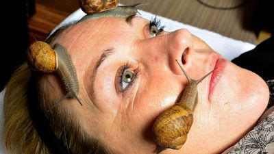 <strong>Snail massage</strong>