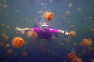 <p><strong>Jellyfish Lake, Palau</strong></p> <p></p>
